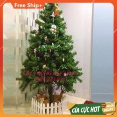 Cây thông Noel lá dày loại đẹp 1m8 sx theo công nghệ Hàn Quốc