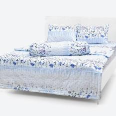 Chăn/Mền Cotton Thắng Lợi chần gòn 1m7x2m mẫu hoa nhí xanh