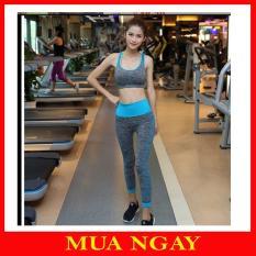 Set Tập Gym Nữ , Yoga, Thể Thao YT11 Siêu Hot Cực Rẻ