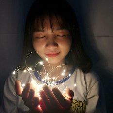 Đèn Led Đom Đóm 2m và 4m Vàng Nắng Xài Pin (Ảnh Thật ) Đèn Led Trang Trí Sống Ảo