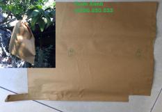 Combo 100 túi bao trái bưởi giấy vàng kích thước 36×30 cm (bao trái bưởi, thanh long…)