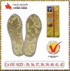 [HCM]COMBO 5 Đôi Lót Giày Hương Quế SƠN HÙNG Hàng Việt Nam Chất Lượng Cao