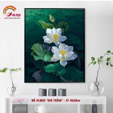 Tranh tự tô màu sơn dầu số hóa DIY về hoa – Mã HL0620 Hoa sen trắng Tranh Trang trí Phòng khách Nhà bếp Làm quà tặng và Giảm Stress