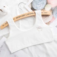 Bộ 5 áo lót học sinh cho bé mới lớn vải cotton thoảng mát quai to