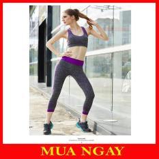 Bộ Đồ Tập Gym Nữ, Yoga, Aerobic, Thể Thao YT11 Cao Cấp Hot Hit