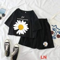 Bộ hoa cúc nhị vàng to + quần đùi đen hoa cúc LN12, áo kiểu nữ, áo thun nam nữ, quần khaki, quần nữ, sét bộ mặc ở nhà, áo thun tay dài, quần jean ống rộng- TIMON