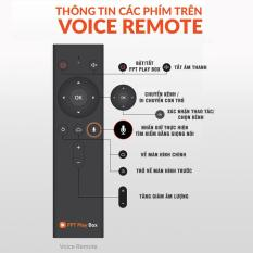 Remote Voice FPT