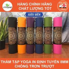 Thảm tập gym yoga TPE dày 8mm chống trơn trượt tặng kèm túi đựng dây buộc thảm Fitfound