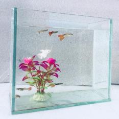 Bể cá mini để bàn 20x10x20cm – Tặng phụ kiện