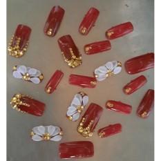 Bộ móng tay giả Cao cấp đắp bột thủ công AA101 nhiều màu