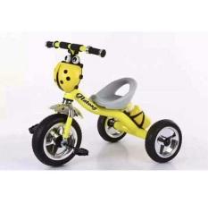 Xe đạp 3 bánh giỏ con bọ, có bình nước