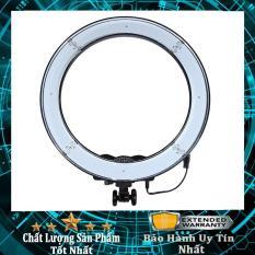 Đèn Led tròn LiveStream Ø 26CM ✓ Trang điểm ✓ Chụp ảnh ✓ Xăm nghệ thuật ✓ SIêu sáng ✓ Có nút chỉnh 3 chế độ sáng