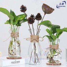 SET 3 lọ hoa thủy tinh EO LỚN – EO NHỎ – LOE – MIX 3 MẪU SIÊU XINH tặng kèm 3 dây dừa trang trí. Hàng uy tín chất lượng giá tốt.
