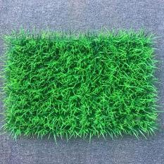 Thảm tường cỏ tươi nhân tạo trang trí loại full cỏ 308 (40×60)
