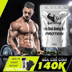 COMBO 2 túi Sữa Tăng Cân Tăng Cơ Hạt Protein + Tặng bình lắc 700ml