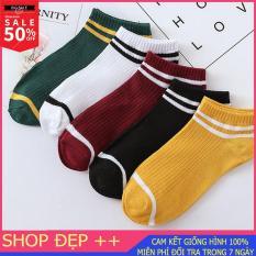 [Combo 5] Set 5 đôi tất 5 màu, tất gân tăm cổ ngắn Hàn Quốc siêu xinh