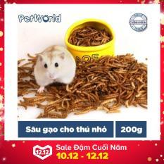 Sâu Gạo – Thức Ăn Cho Hamster, Nhím, Sóc và Thú Nhỏ (200g)
