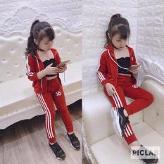 Bộ quần áo khoác thể thao cho bé gái, bé trai 1-6 tuổi