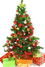[TẶNG 1 NGÔI SAO+2 DÂY KIM TUYẾN] Cây Thông Noel Cao 1m5, Chất Liệu Nhựa PVC