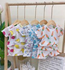 Bộ cộc tay cài vai cotton giấy cho bé sơ sinh hàng đẹp mặc nhẹ mát mềm mại thấm hút mồ hôi