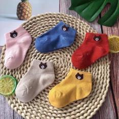 Tất gấu cho bé set 5 đôi có túi zip(1-3 tuổi)