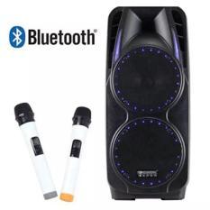 Loa kéo bluetooth Temeisheng A73 (Đen) + Tặng 1 USB Kingston 8GB màu sắc ngẫu nhiên