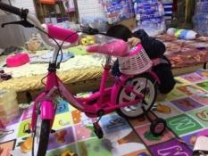 Xe đạp quà tặng sữa Nan 14 inch