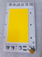 Nhân chip đèn led 220V-100W