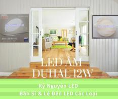 Đèn LED Âm Trần Duhal 12W