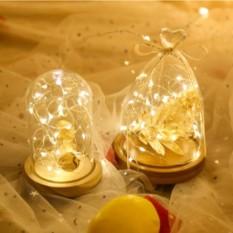 Dây đèn Led fairylight ,dây đèn đom đóm 3 mét dùng pin Lizflower