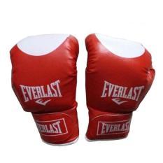 Găng đấm boxing Everlast 10oz (Đỏ) Binhansport