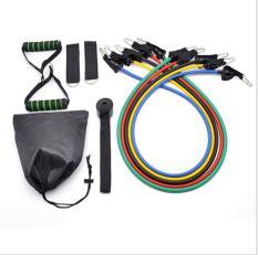 Dây đàn hồi tập Gym S1-D, bộ dây tập thể lực 5 màu – Bộ 11 chi tiết, dây tập kháng lực 100LB tiêu chuẩn