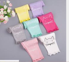 sét 5 quần mèo cotton 4c