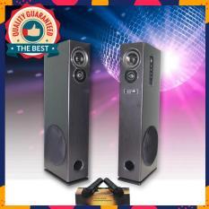 Loa karaoke Bluetooth tiện dụng + TẶNG 2 micro