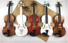 Đàn Violin Gỗ 4/4 Đủ Màu Full Phụ Kiện