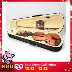 Đàn Violin ( Vĩ cầm ) cao cấp TL-1140 size 4/4 gỗ nâu đỏ (full phụ kiện)