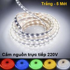 5 Mét Dây LED 5050 Bọc nhựa Chống nước + Tặng dây Nguồn, Cắm điện trực tiếp 220V – Nhiều màu chọn