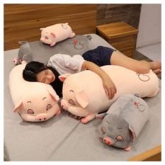 🐷🐷 Gấu Bông Lợn Sữa Tim Siêu to Khổng Lồ Hàng nhập