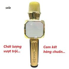 Micro kèm loa Bluetooth Karaoke SD-10 (Cam kết hàng chuẩn)