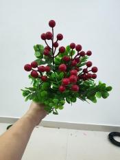 Cụm điểm cherry lá bạc hà