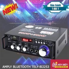 Amly Blutooth Tely-Blj253, Âm Ly Mini, Thiết Bị Thu Bluetooth Cho Loa, Ampli Bluetooth, Amply Hát Karaoke Khuyến mại khủng lên đến 50%, Bảo hành toàn quốc