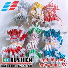 Bóng Led liền dây bộ 100Led 5V các màu Led liền dây 5V dây đồng 100Led chất lượng