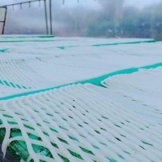 Bún lưới – Phở lưới – Mành mành – Bún võng