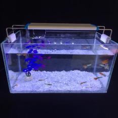 Combo Hồ cá + Lọc nước + Đèn led 28x17x17cm
