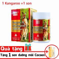 Essence of Red Kangaroo 20800 Max9 ( Tặng 1 son dưỡng)