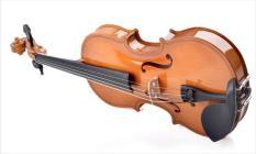 Đàn violon vân sam