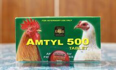 Thuốc Trị Bệnh – Amtyl 500 – 10 Viên