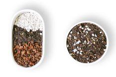 Đất trồng Sen đá cho xứ nóng 0.5KG