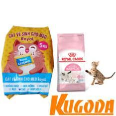 Combo Cát vệ sinh cho mèo hương Táo và Thức ăn mèo Royal Canin baby cat – kgd0379