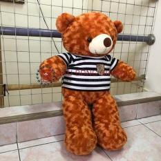 Gấu bông Teddy khổ vải 1m màu Cam